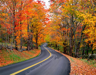 Autumn_Road_L