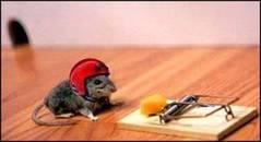 Mousetrap_2
